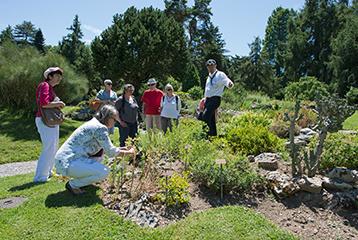 visite du jardinier conservatoire et jardins botaniques ville de genve - Jardin Botanique Geneve