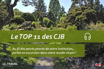 visites guides augmentes sur smartphone aux conservatoire et jardin botaniques - Jardin Botanique Geneve