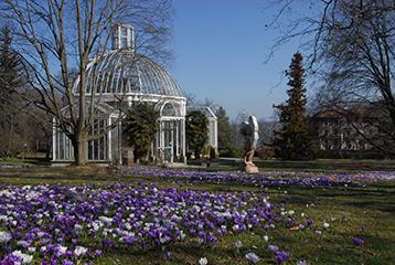 Les Conservatoire Et Jardin Botaniques Developpent Leur Programme De