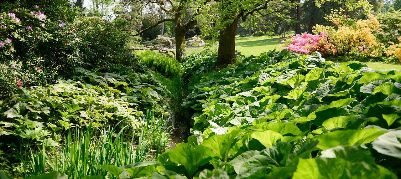 Environnement urbain et espaces verts ville de gen ve for Les espaces verts urbains