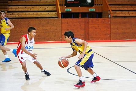 Basketball Ville De Geneve Site Officiel